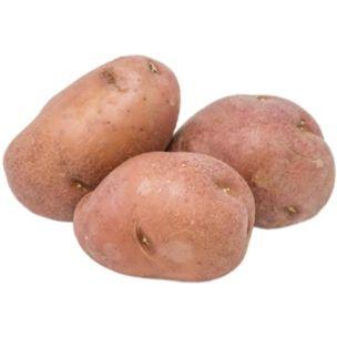 Fresh Red Potatoes-1x20kg