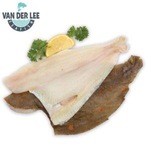 Van Der Lee IQF Boneless Plaice Fillets (10-12oz)-1x4.54kg