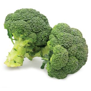 Fresh Broccoli-1x(8-10)