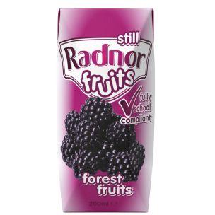 Radnor Fruits Forest Fruits Tetra Pak 24x200ml