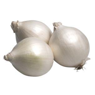 White Onions-1x10kg