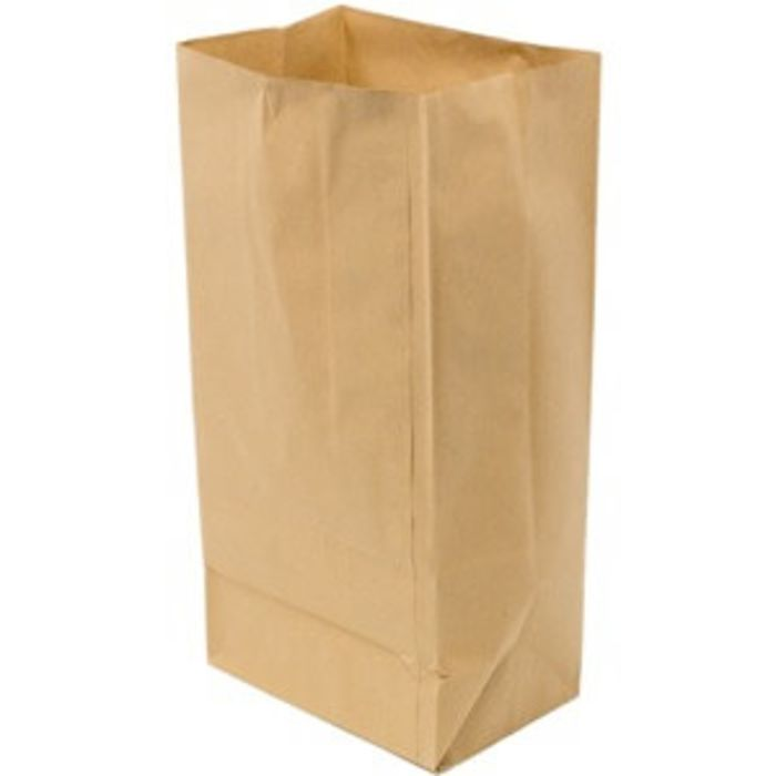 "R4 Brown Small SOS Bags (5""x8.5""x9.5"")-1x250"